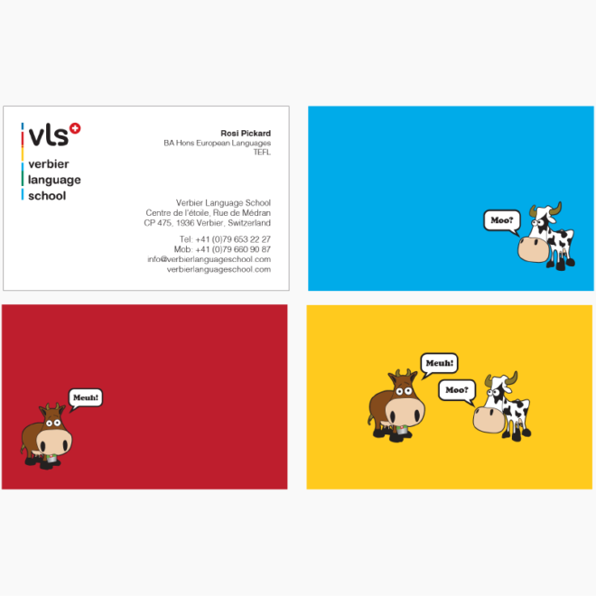vls Asset_3-01
